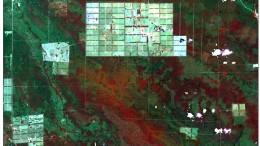 A partir de la sanción de la Ley Provincial de Bosques, se redujeron la superficie y las tasas de deforestación en Santiago del Estero. Sin embargo, se permitió desmontar en zonas de categoría II (amarillo) que la legislación nacional no admite.
