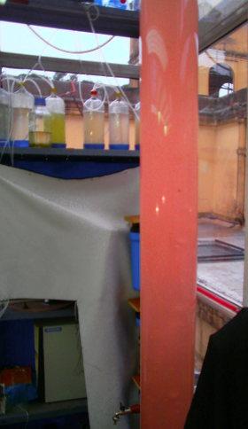 Fotobiorreactor fauba