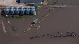inundaciones_en_cordoba_y_santa_fe_fyo_0