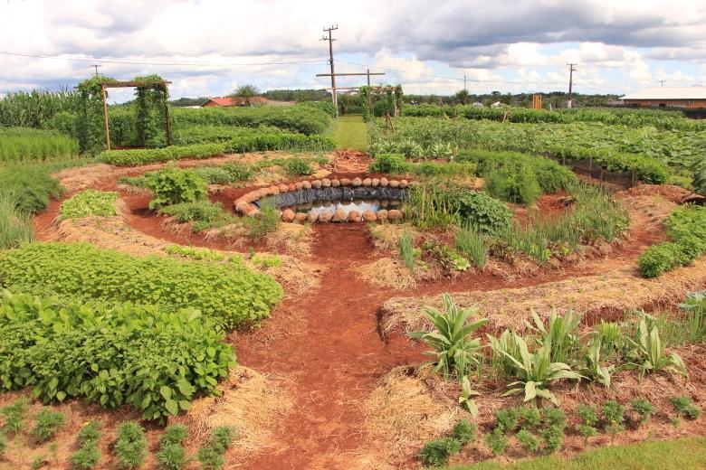 finca agroecológica con diseño en mandala