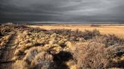 Estepa patagónica