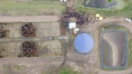 El proyecto integra la agricultura con la ganadería. Con el estiércol de 500 vacunos generan biogás y luego lo transforman en energía eléctrica.