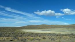 Sitio de recolección de endofitos en Patagonia