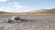 Las sequías recurrentes en el norte de la Patagonia, junto con el aumento de las temperaturas mínimas y las erupciones volcánicas, provocaron la muerte de 1,8 millones de ovejas en Chubut y Río Negro (12% de las existencias nacionales) en la última década. La imagen es meramente ilustrativa. Fuente: La Tercera