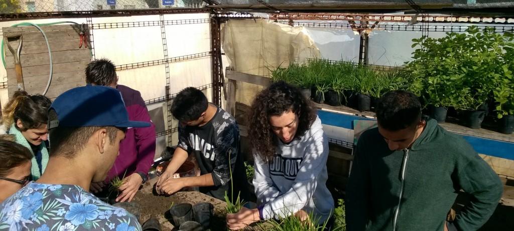 En los últimos años, la FAUBA ya capacitó a 180 personas en jardinería, huerta, producción de invernáculos, pintura de macetas y expresión creativa.