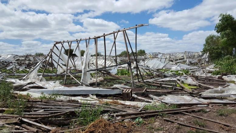 Así quedo el cordón hortícola más importante de la Argentina luego del temporal del fin de semana pasado. Foto: UTT