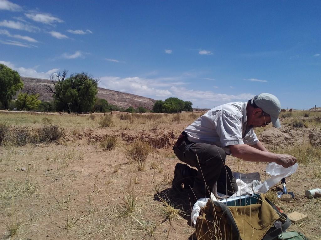 Los suelos frágiles de la Puna están siendo fuertemente afectados por distintos procesos de erosión, que llaman la atención de los investigadores.