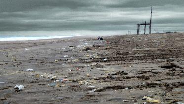 La investigación de la Facultad de Agronomía de la UBA estimó una contaminación de hasta 8 toneladas por plásticos en las playas de Villa Gesell hasta Mar Azul, en la costa de la provincia de Buenos Aires.