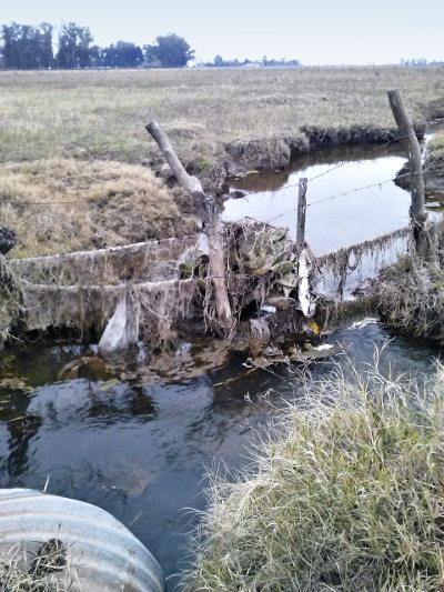 arroyo contaminado Pergamino