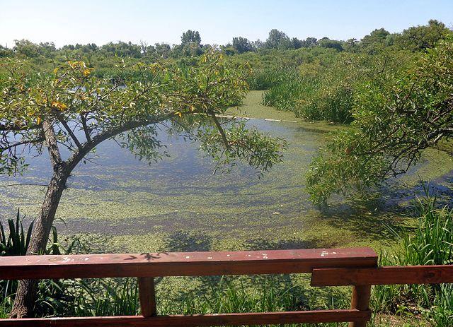Parque Natural Ribera Norte