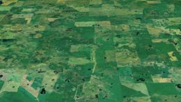 Imagen satelital de forrajes