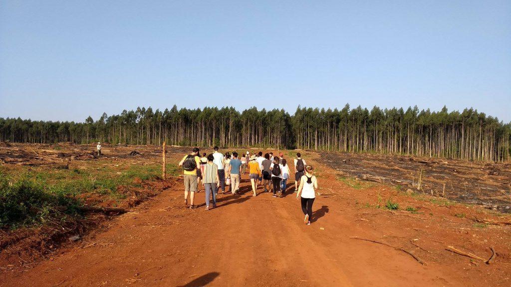 """""""Hay que entender la salud de los cultivos como un proceso. Para fomentarlo, hay que aumentar la interacción entre los y las productoras, y las organizaciones sociales e instituciones académicas """" (Vega). Foto: Agroecosistemas Campesinos FAUBA"""