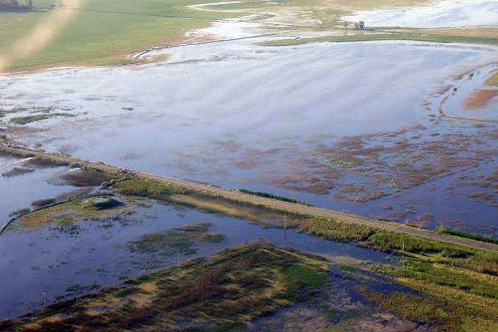 Para las plantas terrestres, el suelo inundado es un desastre ya que se restringe el intercambio de gases. Además, se generan moléculas tóxicas como el sulfuro de hidrógeno (F. Mollard). Foto: Infopico.com