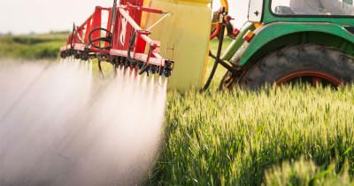 Nuestro sistema productivo, tan exitoso en cuanto a expansión y rendimientos, va acompañado de un control estricto de malezas que requiere la aplicación muy intensiva de herbicidas. Foto: foroambiental.net
