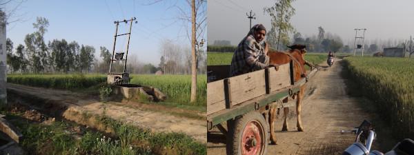 En la India, la electricidad para el agro tiene tarifa plana. Todas las áreas agrícolas de ese país están surcadas por una gran red eléctrica