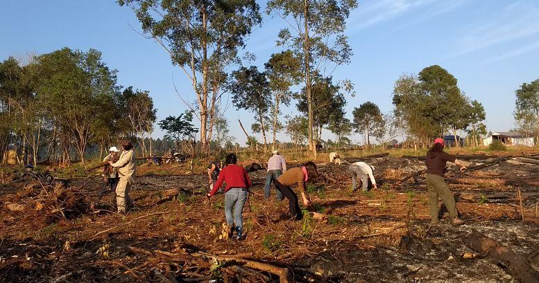 Desde el año 2009, el equipo de la materia Agroecosistemas Campesinos (FAUBA) trabaja con la comunidad de PIP. Antes de la pandemia realizaban anualmente viajes de estudio a comunidades campesinas