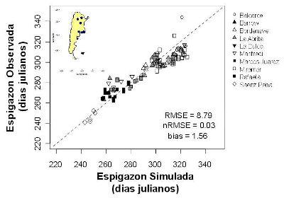 Los dos modelos poseen un alto nivel de precisión. La figura muestra el ajuste para la fecha de espigazón entre la realidad y la simulación, para 9 variedades de trigo en diversas localidades