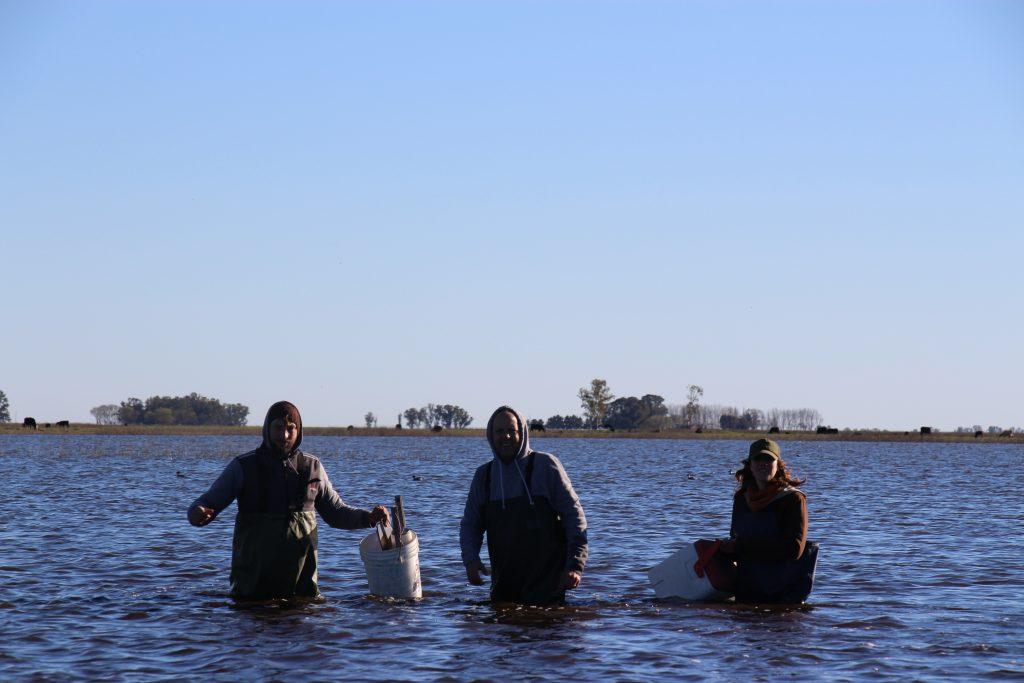 De derecha a izquierda: Amalia Stasta, Armando Rennella y Alejandro López realizando mediciones en una laguna.