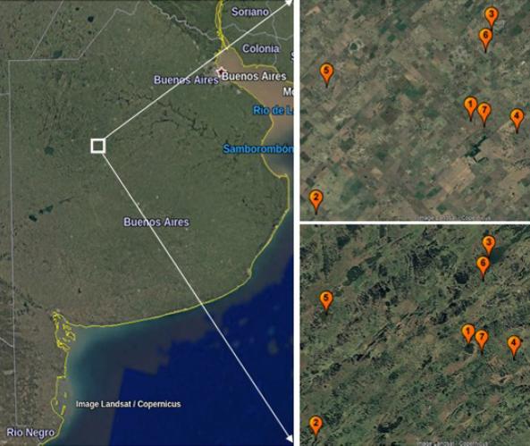 Ubicación del área de estudio, en la provincia de Buenos Aires. Derecha: Detalle del área de estudio, abajo ene un año húmedo y arriba en un año seco (2003 y 2009, respectivamente). Los números corresponden a las lagunas: 1- Grande, 2- Consulta, 3- Espátulas, 4- Medialuna, 5- Teros, 6- Van Gogh y 7- Molino