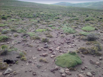Aunque en los sistemas áridos el control principal de la PPNA es la lluvia, Irisarri y colaboradores detectaron que las personas también pueden contribuir a la desertificación